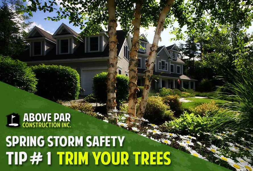 Spring Storm Safety Tip #1